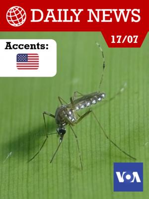Des chercheurs brésiliens ont conçu le parfait piège à moustiques