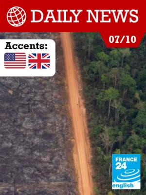 Feux en Amazonie : le dangereux travail des ONG sur le terrain
